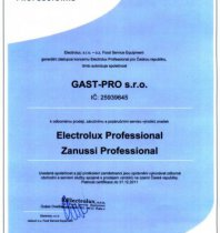 Crtf Autoriz.obch.partner Electrolux 2011-Gast-Pro.jpg
